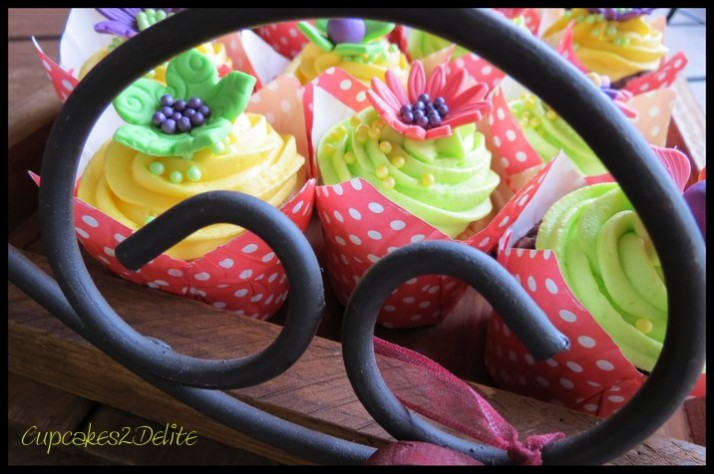 Kate Hurley's Cupcakes2