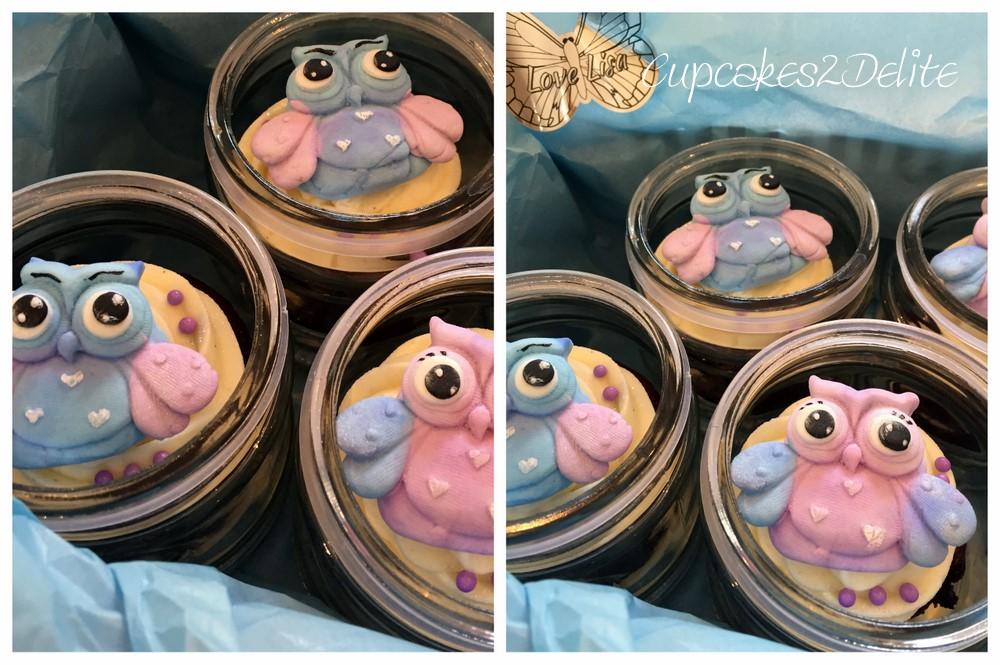 Owl Cupcakes in Pastel Pink & Blue