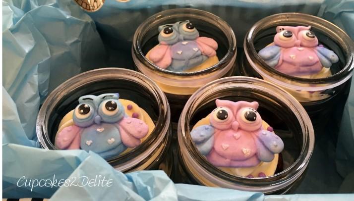 Owl Cupcakes in Pastel Lavender & Blue