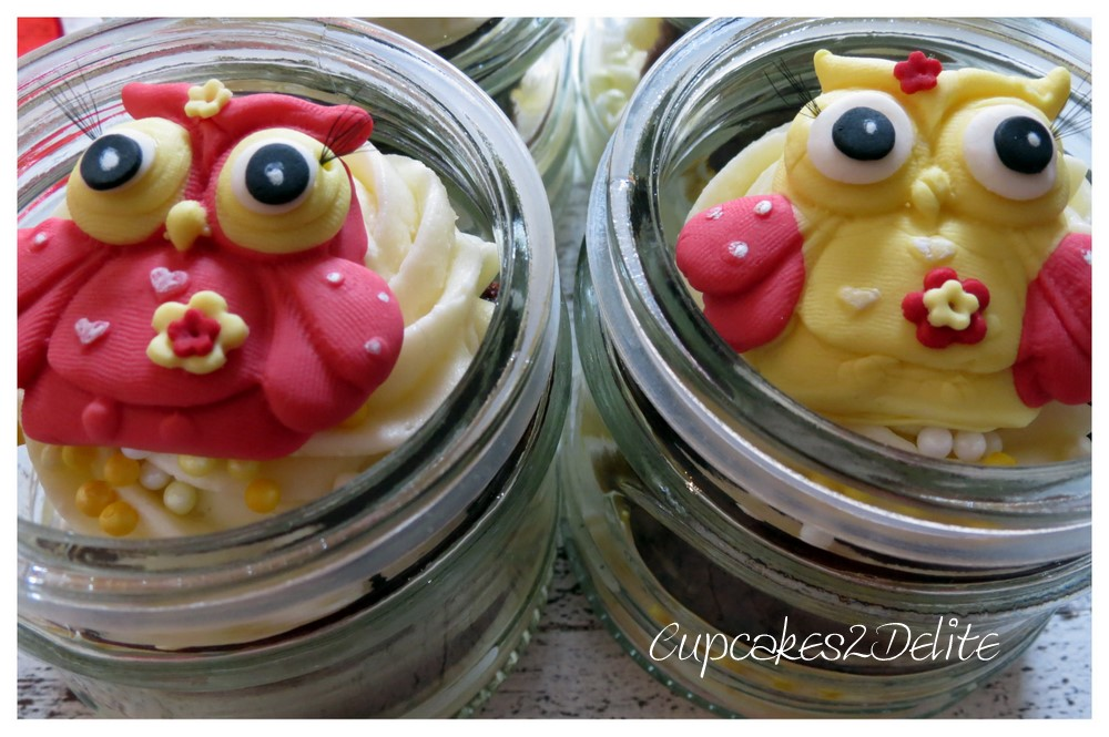 Owl in a Jar Cupcakes