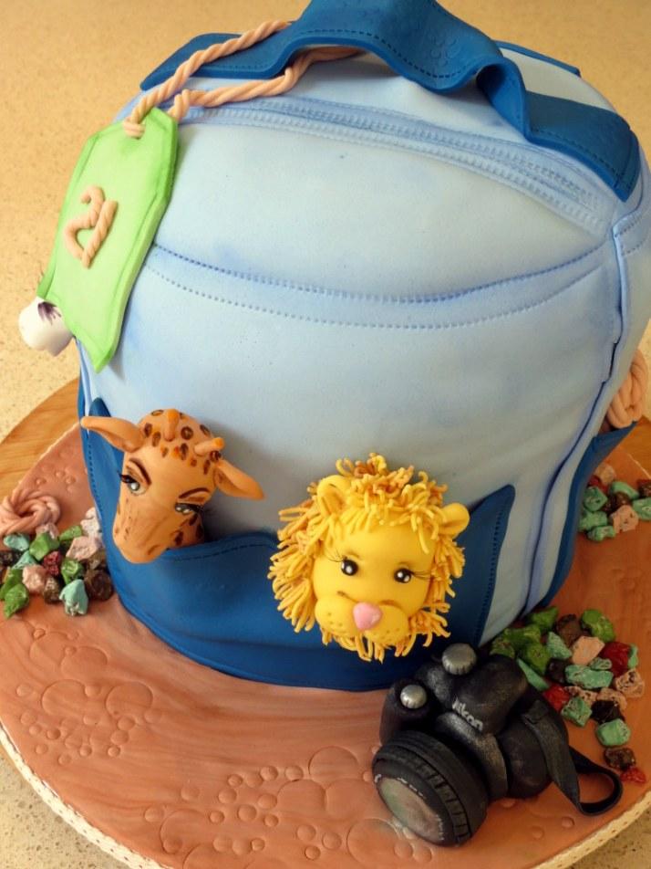 Backpack 21st Birthday Cake
