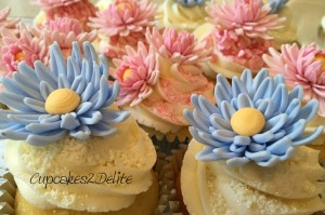 Pink & Blue Daisy Cupcakes